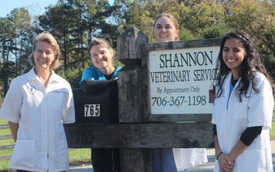 2015 Vet of the Year-Shannon Veterinary Services